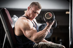 Man at fitness training with dumbbells in gym Royalty Free Stock Photo