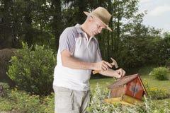 Man fixing old bird house-closeup Royalty Free Stock Image