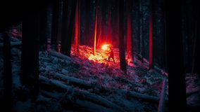 Man With Flare Climbs Forest Slope In Snowfall stock footage