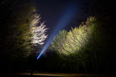 Man with flashlight in forest royalty free stock images