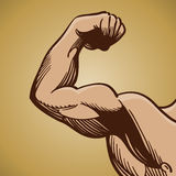 Man Flexing Arm Muscle. An illustration of a muscular arm Stock Images
