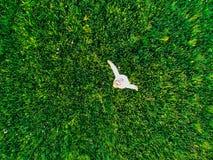 Man flickan på de gröna fältfotona från en höjd arkivfoton