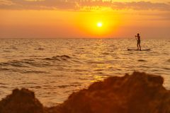Man floating on paddle board in sea at sunset. Young man floating on a paddle board, SUP, in the sea at sunset, rear view royalty free stock image