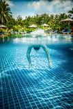 Man floats underwater in pool Royalty Free Stock Images