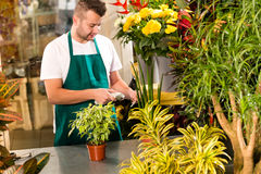 Man florist reading price barcode reader flower Stock Photography