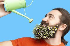 Man with flower`s beard and watering can. Happy Easter concept. Nice kind muscle man male with watering can watering beard with flowers isolated on blue stock photography