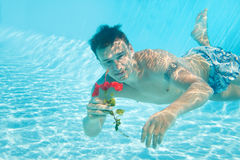 Man with flower in swimming pool. Man swimming with open eyes underwater in pool holding flower Stock Images