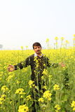 Man in flowering mustard field Stock Photo