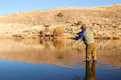 Man Fly Fishing. A Man Fly Fishing in a Lake Stock Photos