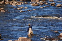 Man fly fishing Royalty Free Stock Photography