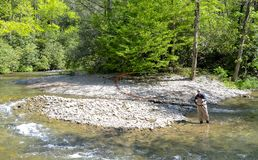 Man Fly Fishing on a River. A man standing at the bend in a river casting his fly rod to catch trout stock photos