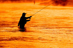 Man Flyfishing Fishing in Misty River in the Morning Stock Images