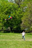 Man and flying kite Royalty Free Stock Image