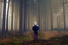 Man in foggy autumn forest with warm light Stock Photography