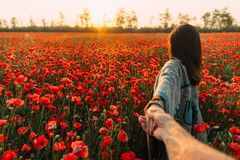 Man follows a woman in poppy meadow at sunset. royalty free stock image