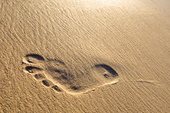 Man foot print on a white sand beach Stock Images