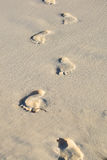 Man foot print on a white sand beach Royalty Free Stock Image