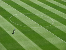 Man on the football pitch Royalty Free Stock Images