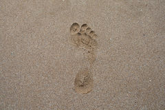 Man footprint in the sand Stock Photography