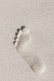 Man footprint in white sand on the beach Royalty Free Stock Images