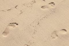 Man footprints in wet yellow sand on beach Stock Photos