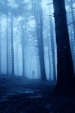 Man in the forest. Lonely man in the forest  in the night Royalty Free Stock Image