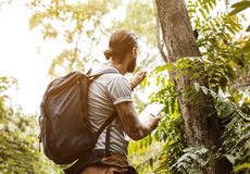 Man in forest alone for trekking Stock Images