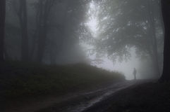 Man in a forest with fog