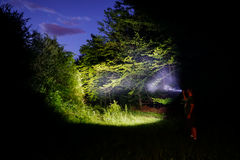 Man in forest at night royalty free stock image
