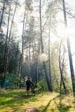 Man in the forest Royalty Free Stock Images
