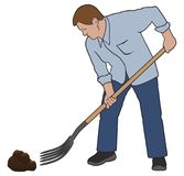 Man Forking Poop. A man is using a pitchfork to clean up after his wife`s horse Stock Image