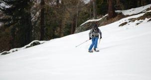 Man freeride snow skiing near forest.Mountaineering ski activity. Skier people winter sport in alpine mountain outdoor stock video
