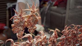 Man Fries Squid. Asian Street Food. Spicy Street Food stock video footage
