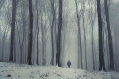 Man in frozen forest in winter with fog Stock Images