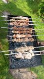 Man is frying meet in garden. Food on skewer, grill, barbecue. Man is roasting meet on brazier in the summer garden  Shish kebab , shashlik, barbecue, marinated Stock Image