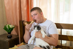 Man and funny cat eating ice cream cone in the bed Royalty Free Stock Photo