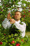 Man in garden. Royalty Free Stock Images