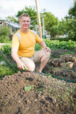 Man in the garden grows zucchini Royalty Free Stock Photo