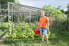Man in garden Stock Image