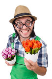 Man gardener with flowers on white Royalty Free Stock Image