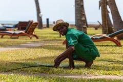 Man gardener hotel worker Stock Photo