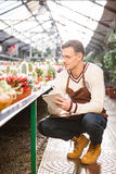 Man gardener looking at cactuses and making notes in notebook Stock Photography