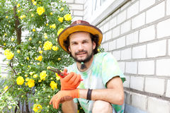 Man gardener with  secateurs Stock Image