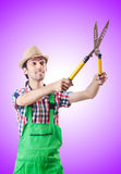 Man gardener with shears on white Stock Image