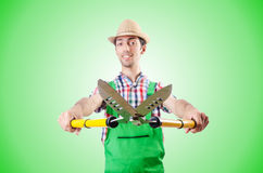 Man gardener with shears on white Royalty Free Stock Image