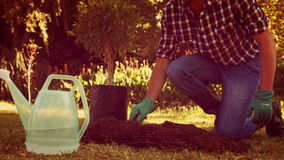 Man gardening in the park stock video footage