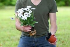 Man gardening Royalty Free Stock Images