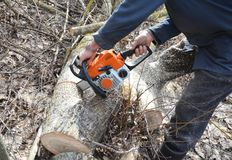 Man with Gasoline Petrol Chain Saw Tree Cutting Outdoor. Worker hands with Petrol Chainsaw Cutting Trees. Man with Gasoline Petrol Chain Saw Tree Cutting Royalty Free Stock Photo
