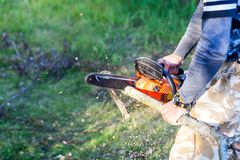 Man with gasoline powered chainsaw cutting fire wood from tree i. N forest. camping and holiday consepts Royalty Free Stock Photography