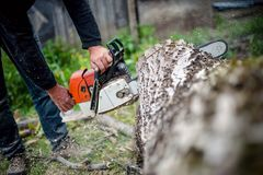 Man with gasoline powered chainsaw cutting fire wood Stock Photos